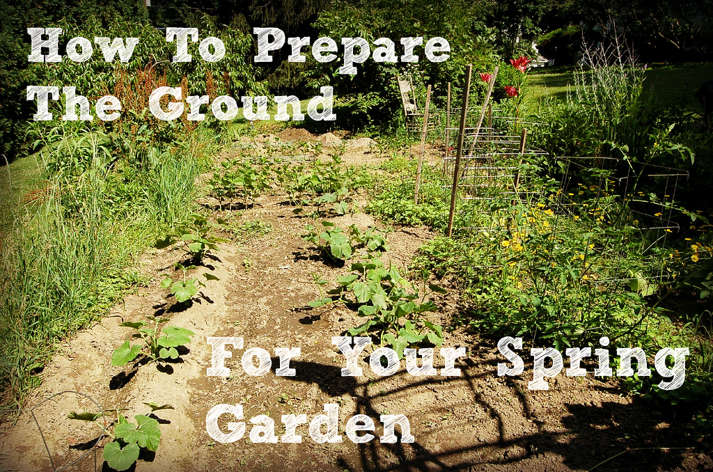 How To Prepare The Ground For Your Spring Garden